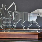 Horse and carriage trophy
